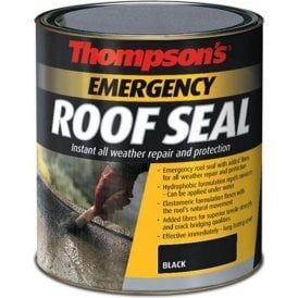 Emergency Roof Seal Black 2.5L 34887